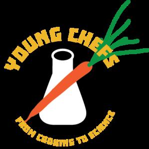 yc_logo_1